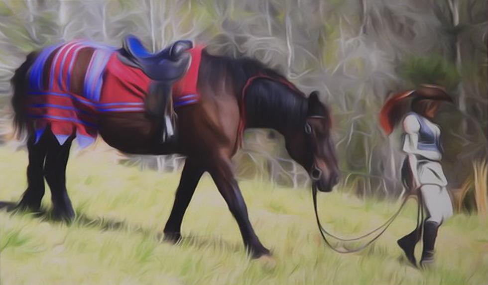 ECAG Armory Richard Brown Horse