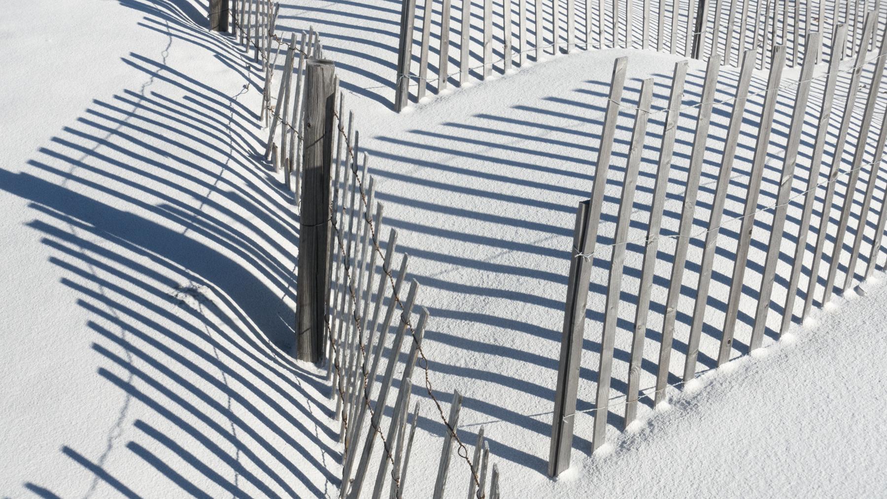 Warren Simons_Sand Dune Fencing